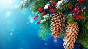 Huseyn_Tagizade_Happy_New_Year_YURrR2BRcQ.jpg